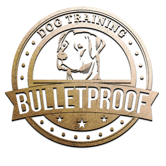 Bulletproof Dog Training
