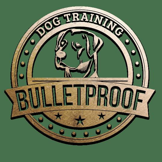 Dog Obedience Training Cincinnati Oh Basic And Advanced Obedience Cincinnati Dog Board And Train Cincinnati
